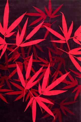 Overhead image of botanical Bamboo rug