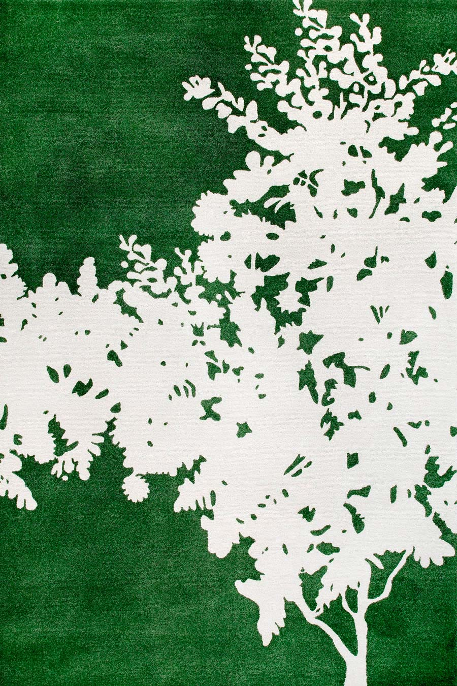 Overhead image of green wattle rug by Cloth