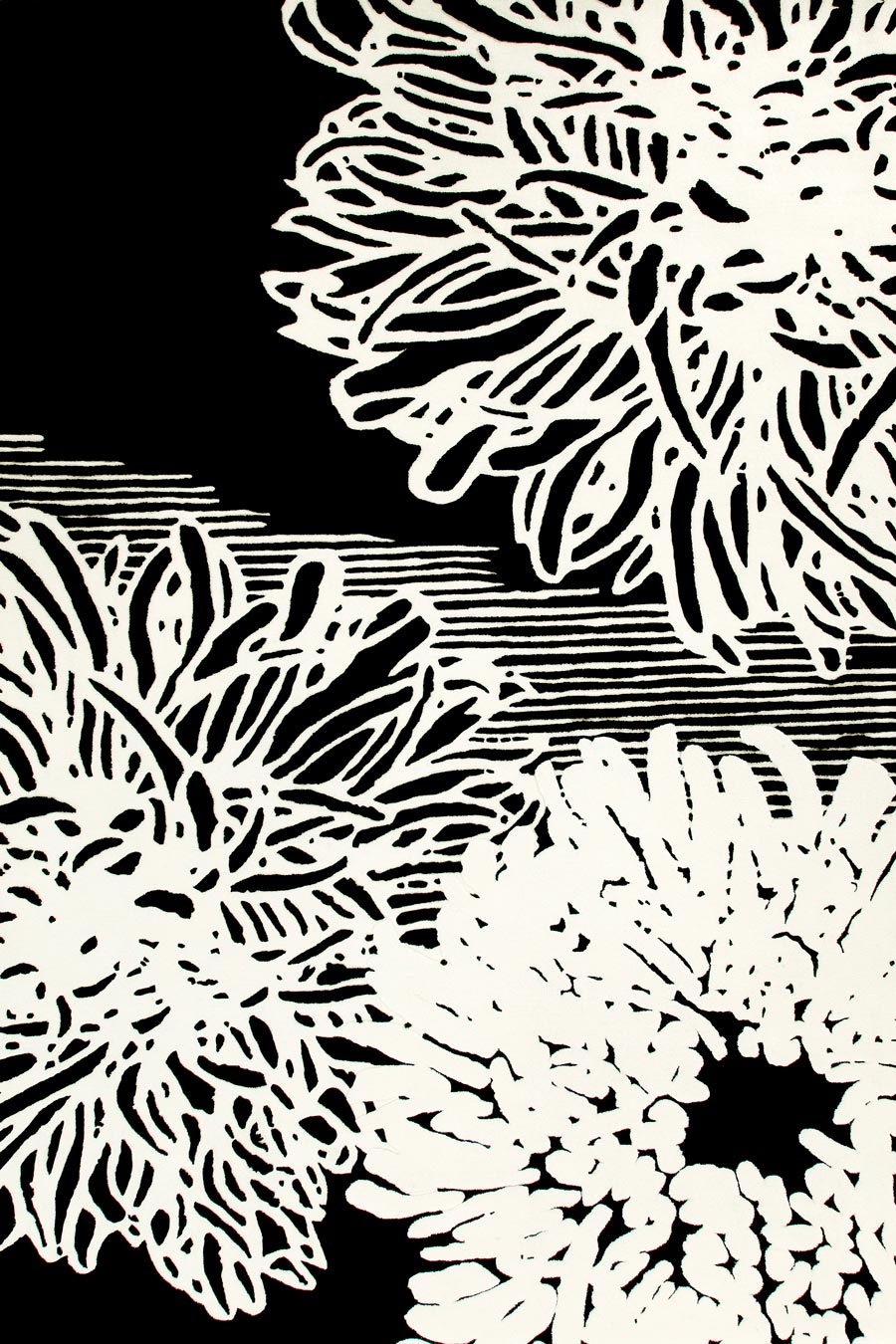 overhead of fuyu rug by akira black background with 3 large white flowers