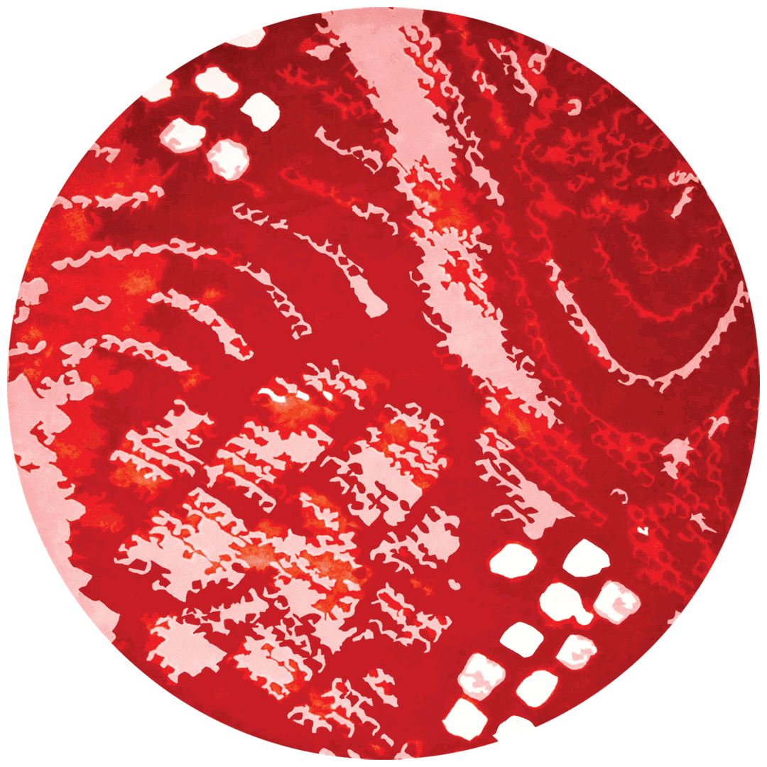 overhead of shibori round rug by akira in red abstract pattern