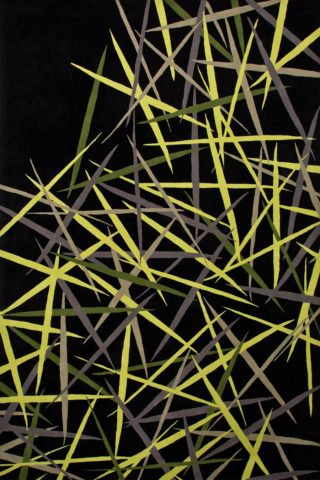 overhead of pick up sticks rug by bleux green pattern on black background