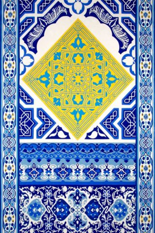 overhead of blue hydra rug by camilla