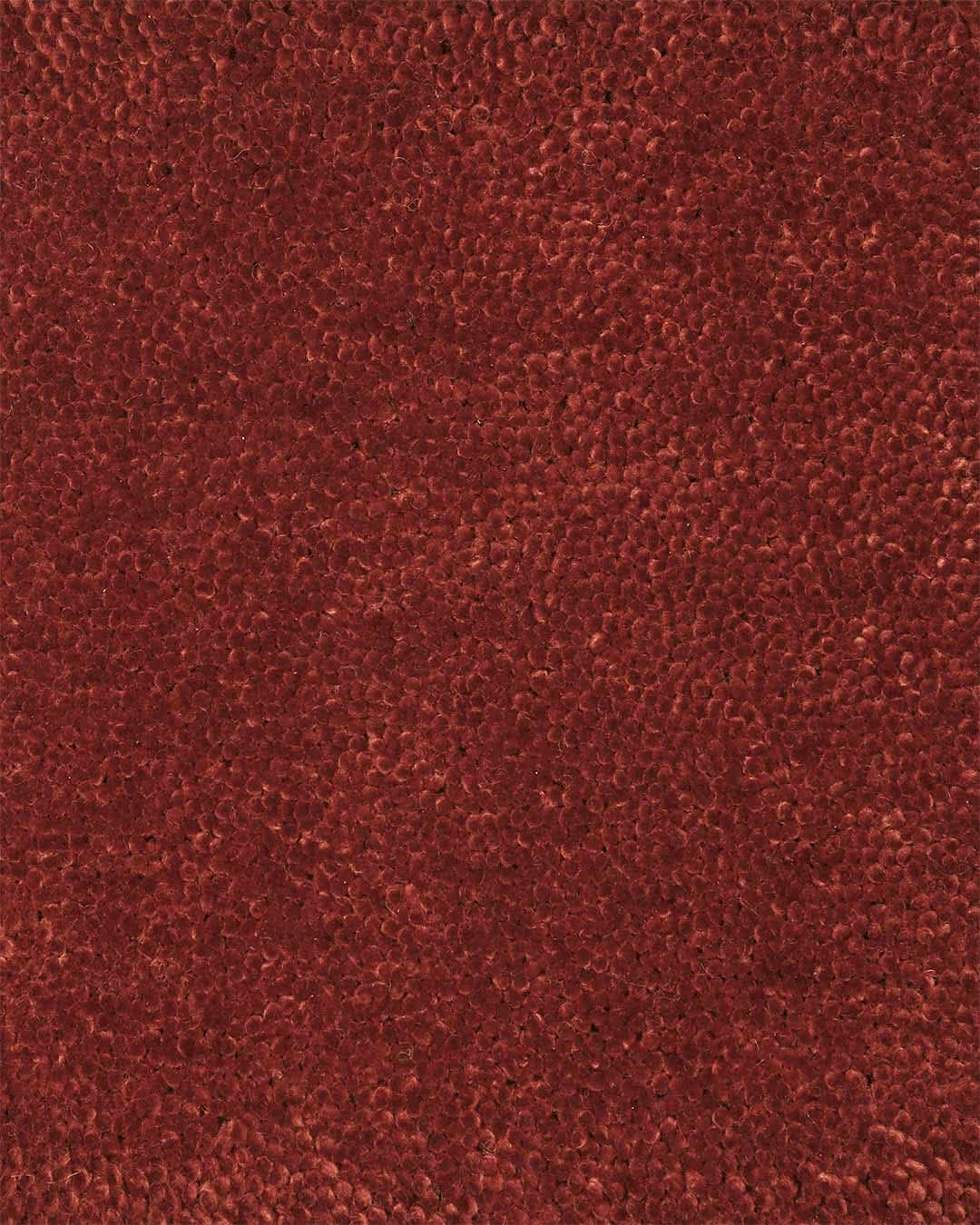 Close up view of textured Napoleon Cut Pile rug in red colour